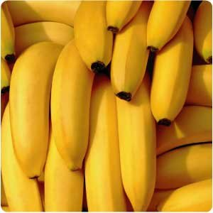 Fresh Bananas For Sale