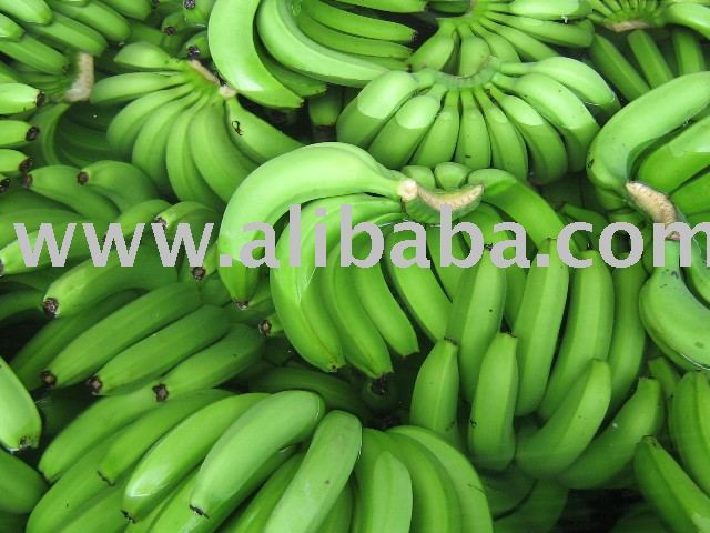 Fresh Banana, Cavendish Banana, Philippine Banana