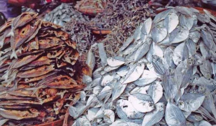 DRIED FISH, SALTED FISH FROM Bangladesh