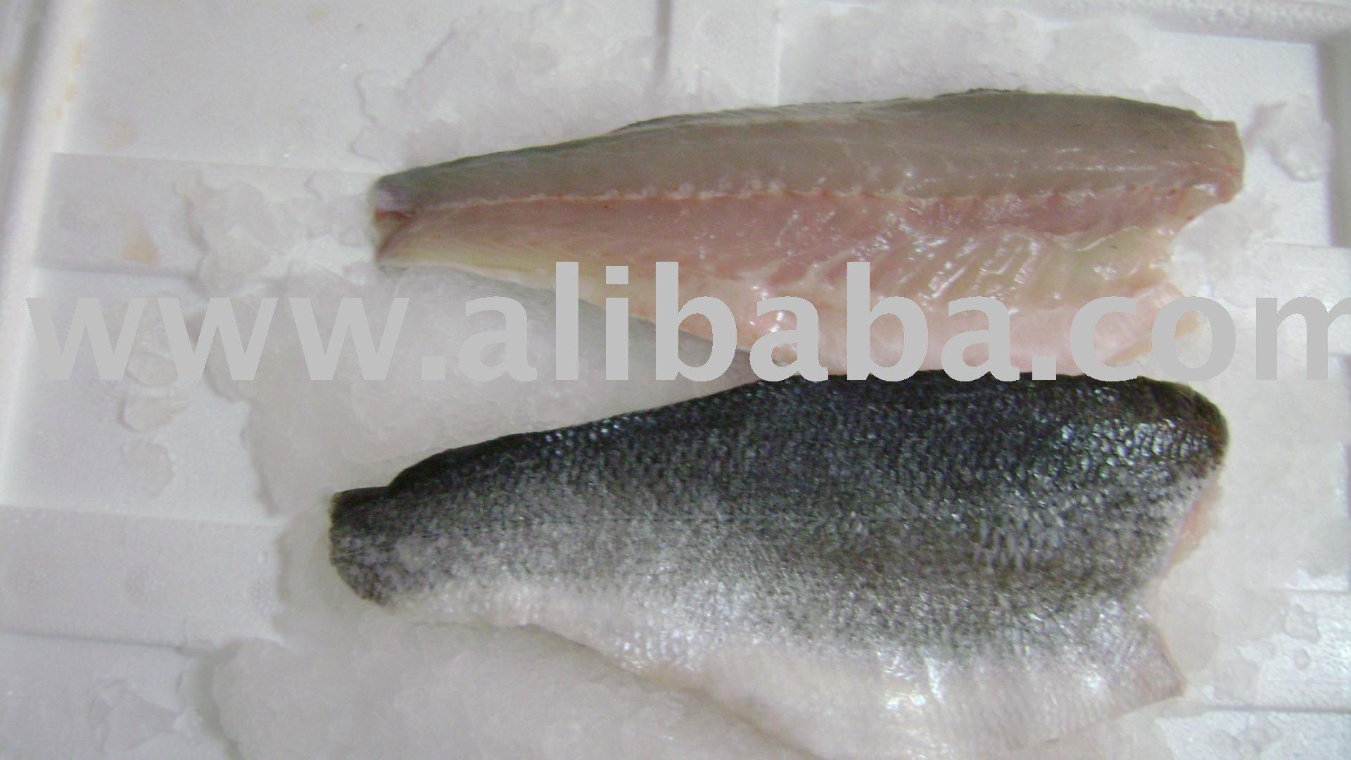 Sea bass sea bream fillets products turkey sea bass for Turkish sea bass recipe