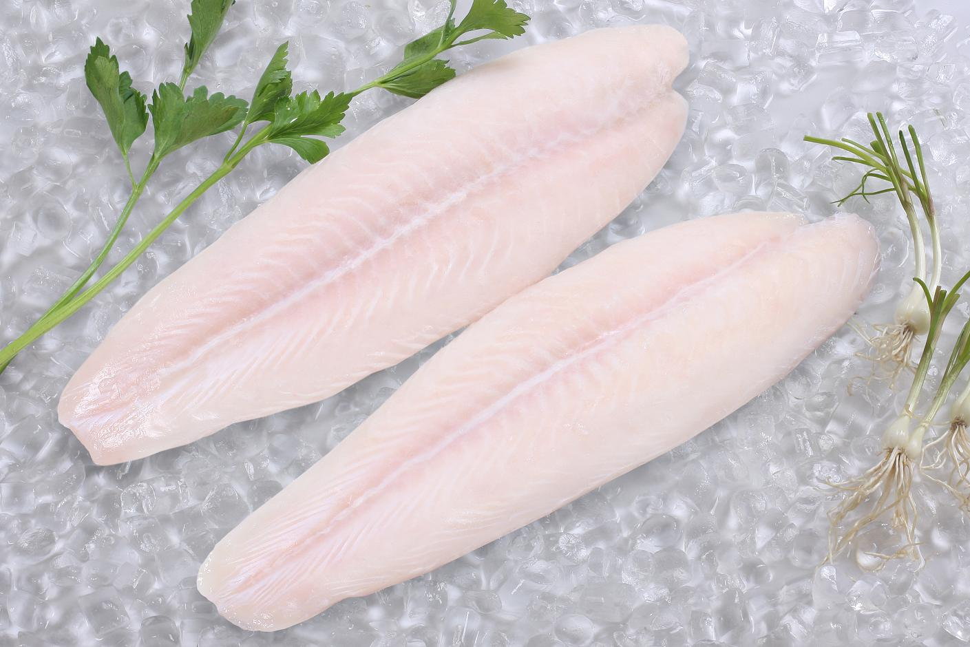 Frozen pangasius fish products indonesia frozen pangasius for What is pangasius fish