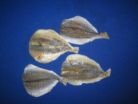Croaker fish fillet - photo#20