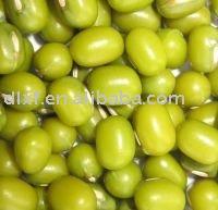 green mung beans/mung bean