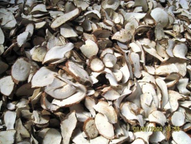 Tapioca chips - Tapioca starch
