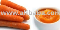 Sell Carrot Juice Puree