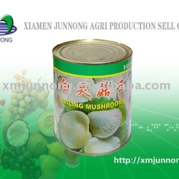 canned bailing mushrooms(bailing mushrooms),canned mushroom products,China canned bailing mushrooms(bailing mushrooms),canned mushroom supplier360 x 360 jpeg 28kB