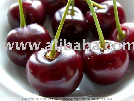 sour cherry juice concentrate