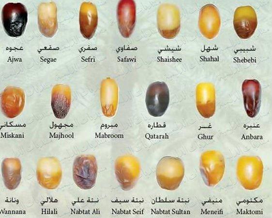 how to eat ajwa dates