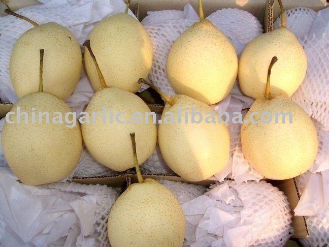 Suppli A Pera Al Sugo (Pear Shaped Tomato Rice Croquettes) products ...