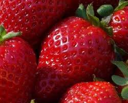 straw berry fruit