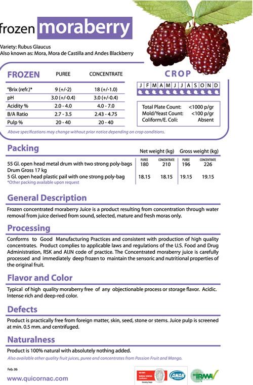 Frozen  moraberry