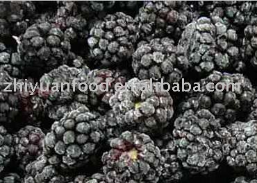 Frozen Blackberry (IQF fruit)