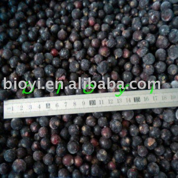 iqf blackcurrants