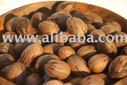 Pecan Nut Products Malaysia Pecan Nut Supplier