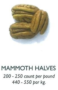 Pecan Mammoth Halves