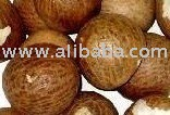 Quality Fresh and Dried Betel Nut , Peanut and Cashew nuts for sale .