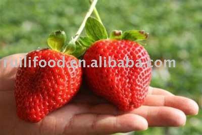 more fresh   nutrition  ````` fruit  , fresh  fruit  , fresh strawberry