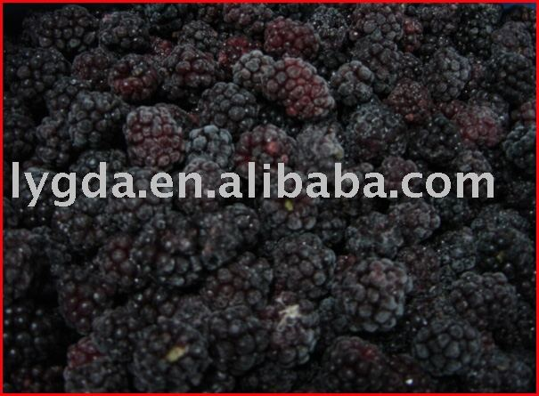 Frozen Blackberry (IQF Blackberry)