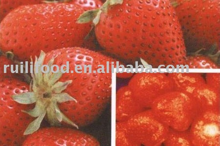 rich nutrition for you ```` fruit ,dried fruit , canned fruit