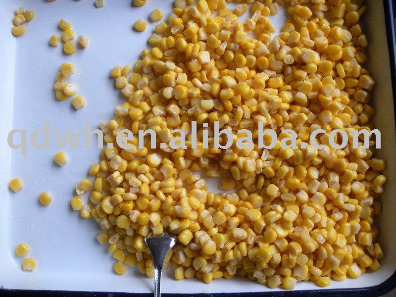 Canned sweet corn / canned sweet corn kernel
