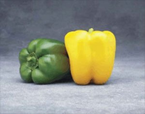 Admiral Sweet Pepper Plant