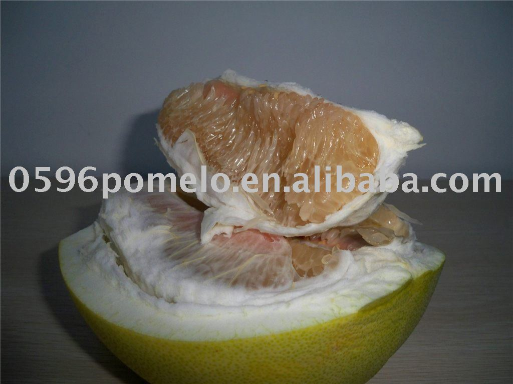 Export pomelo