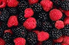 berries fruit