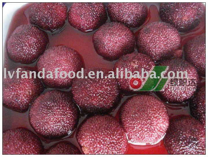 Canned Arbutus in light syrup metal can fruit