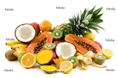 Canned coconut, mango, pineapple, rambutan, guava, papaya, palm seeds ...