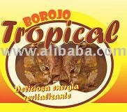 Borojo Tropical,  Colombian fruit Pulp
