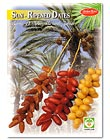 Sun-Ripened Dates
