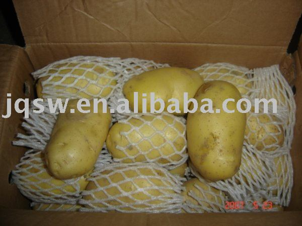 2010 fresh potato high quality!best price!