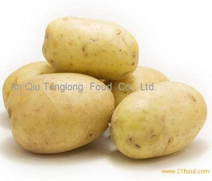 Organic Fresh Yellow Potatoes for sale