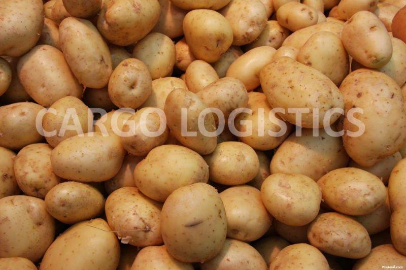 how to cook fresh sweet potatoes