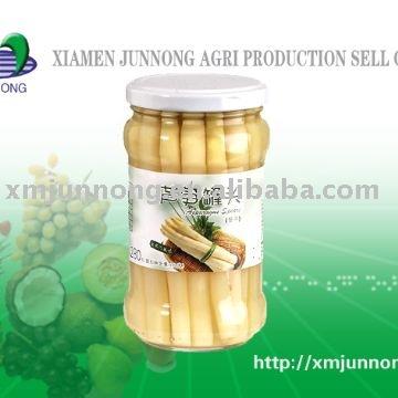 canned asparagus spear/jar asparagus