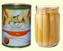 Canned Baby Corn Manufacturer