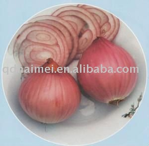 Chinese Fresh Organic Yellow Onions