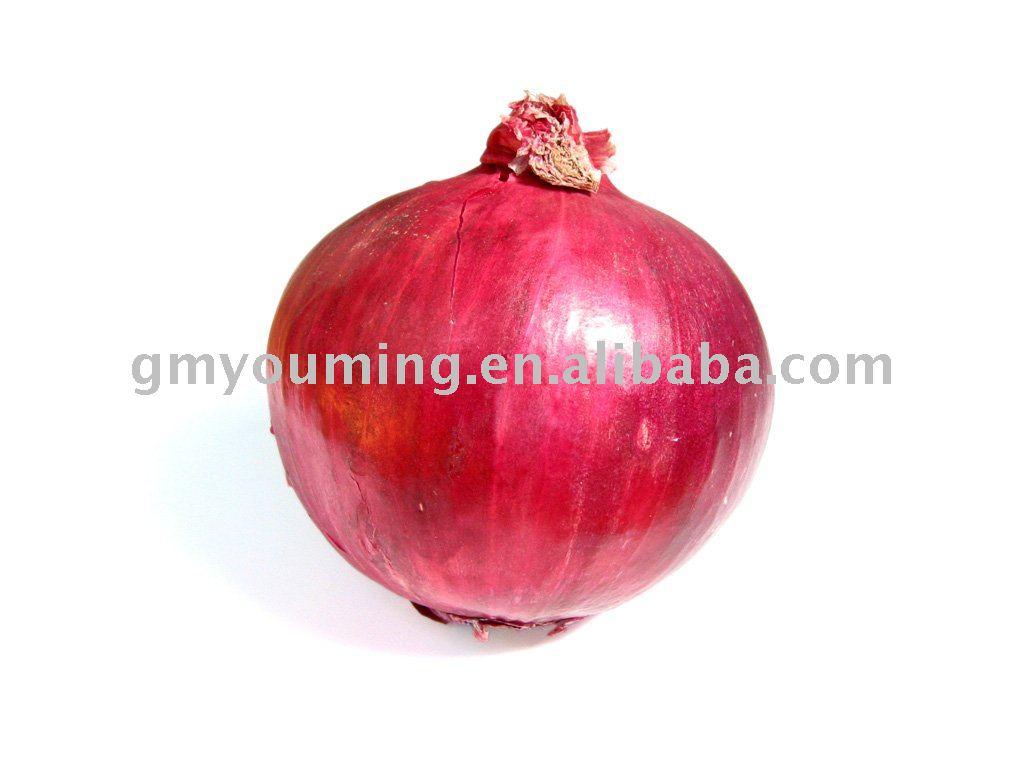 Small Fresh Chinese Red onion