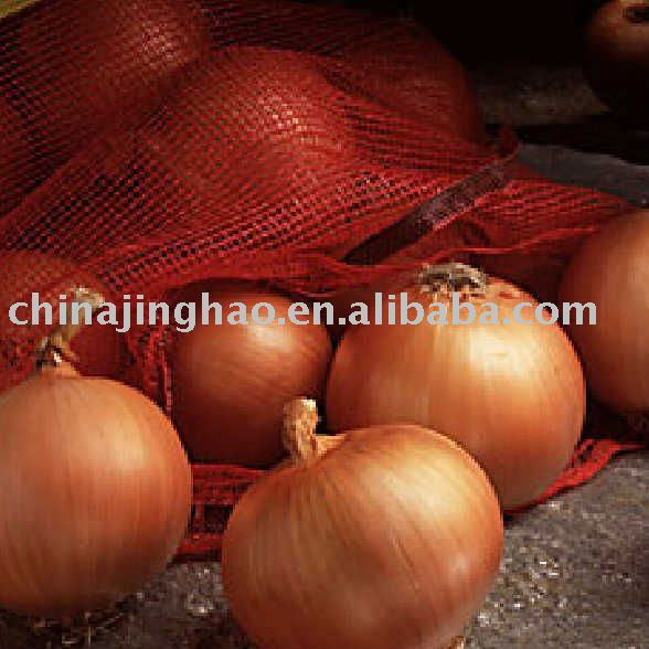Fresh Organic Onion 2010