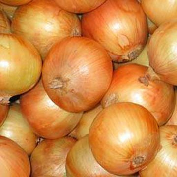 Yellow Onion, Red Onion