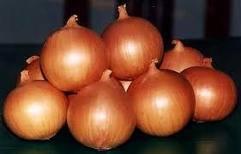 Onion,cashew,garlic,jinjer