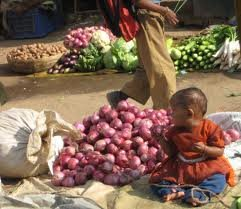 Baby Onion for sale