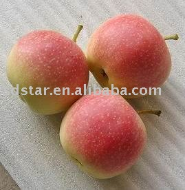 gala apple(fresh apple)