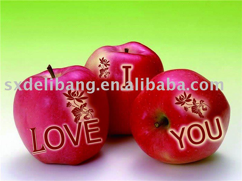 RED FU JI APPLE
