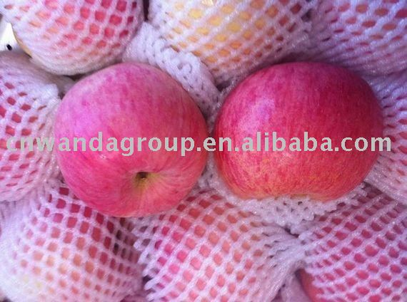 organic apples red fuji apple
