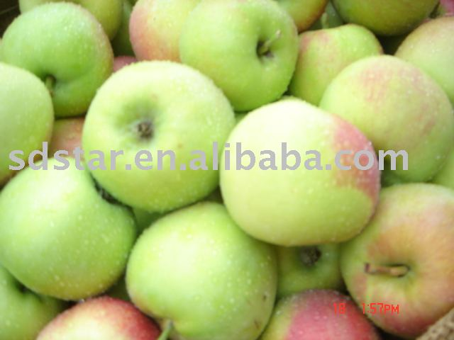 early  apple(fresh apple)
