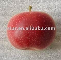 apple(fresh gala apple)