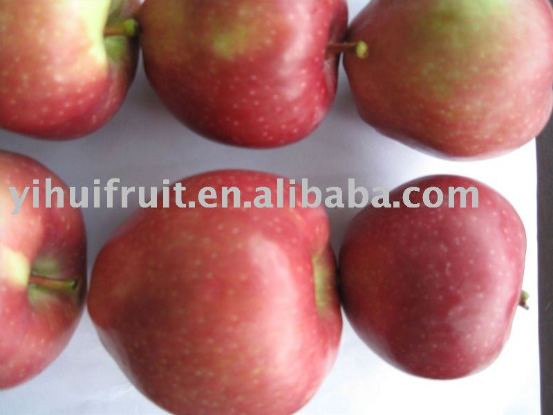 how to eat star apple fruit