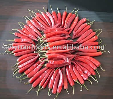 sell hot red chili