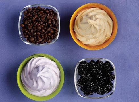 FROZEN DESSERT - Frozen Yogurt